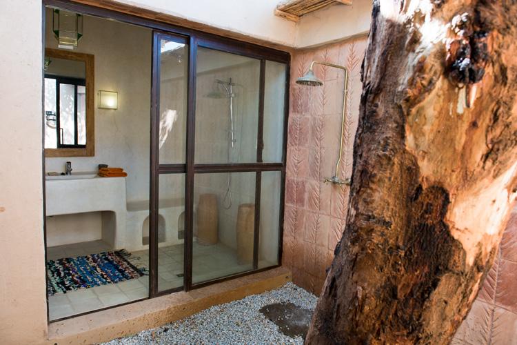http://alhossoun.com/wp-content/uploads/2014/12/Eucalyptus005.jpg