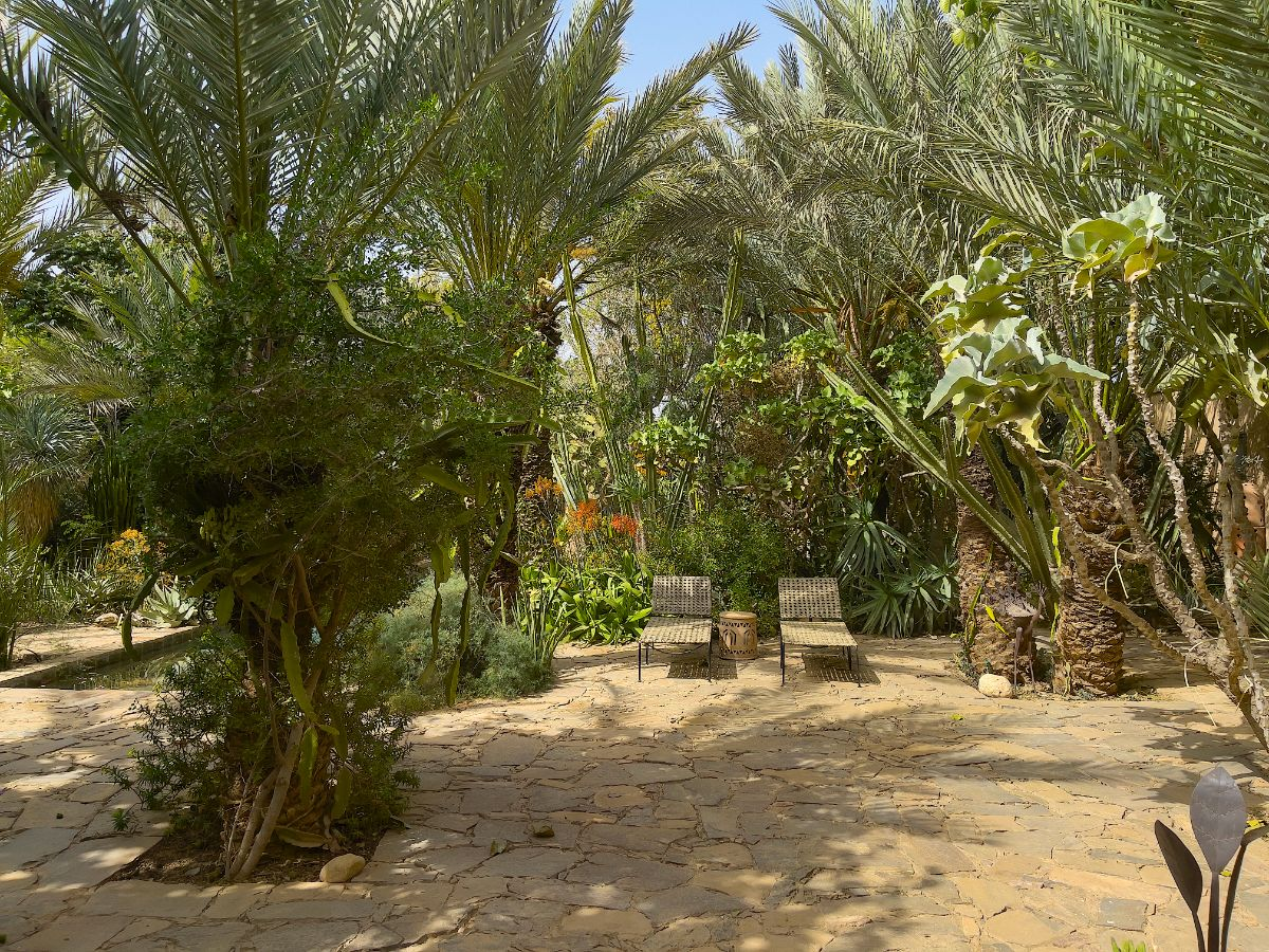 03_OUEDSOUSS_ANABLOOM_IMG_9622